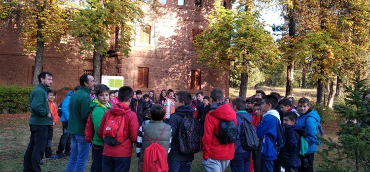 Visita al Parque Cultural de Albarracín para conocer los ecosistemas
