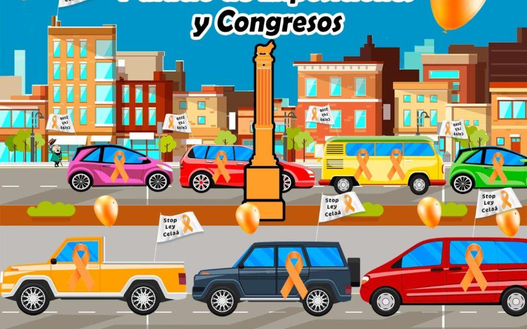 Domingo 22 Noviembre. Manifestación en automóvil. Por el derecho a elegir la educación de nuestros hijos